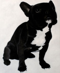 French Bulldog II