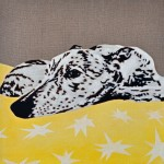 Starry Night - Portrait of a Greyhound 5