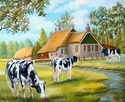 Boerderij met koeien